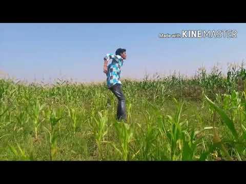 Gunde chappudu agipotunde song