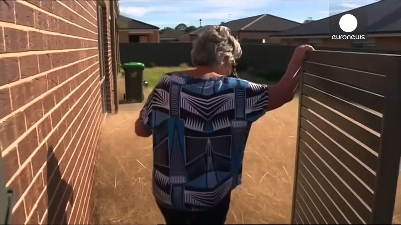 Hairy Panic in Australia