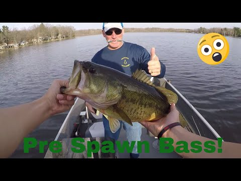 21 FISH IN 2 HOURS! MONSTER BASS!!!