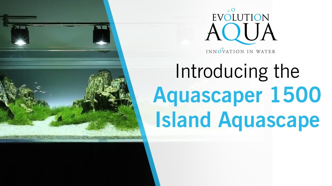 Aquascaper 1500 - Island Aquascape - YouTube