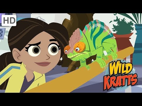 Wild Kratts - The Amazing Falcon Powers Suits | Kids Videos