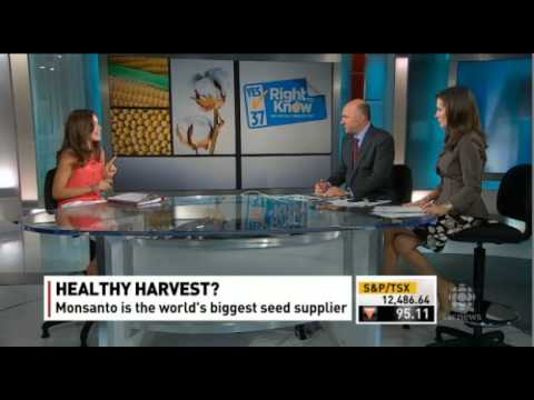 Rachel Parent debates GMO's (vs) Kevin O'Leary on CBC's Lang & O'Leary Exchange