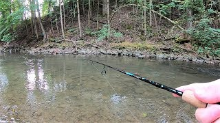 TROUT Fishing TIPS - Trout Fishing with Spinners in Creeks & Streams