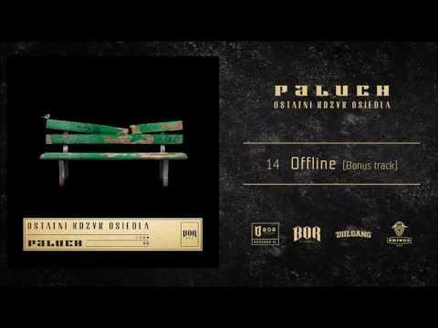 Paluch Offline  prod PSR  BONUS TRACK