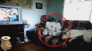 5 Eventos Misteriosos Captados En Cámara thumbnail