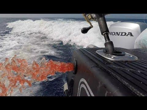 Josh James Hokitika Trench Deep Sea Fishing for Hapuka, Trumpeter and Bluenose