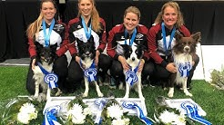 °°Agility World Championship 2019°° - Mona Grefenstein & Qju - Turku (FI)