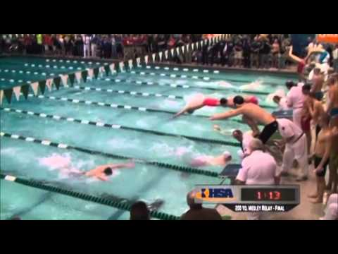 2013 IHSA Boys Swimming & Diving State Finals