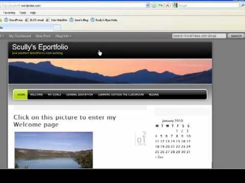 Sharing Your WordPress URL