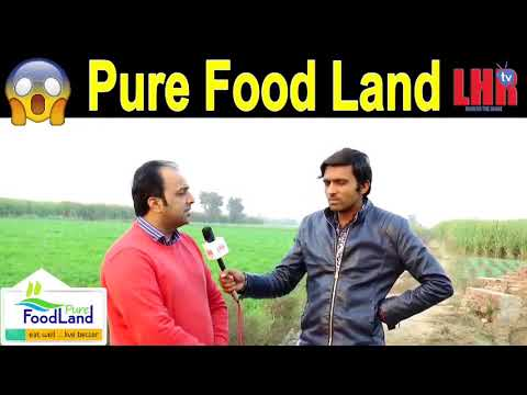 pure food land