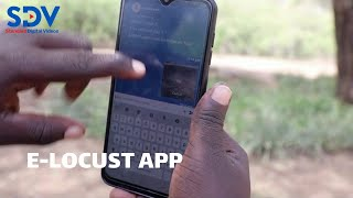 Tackling a new generation of locusts using new phone APP called E-Locust