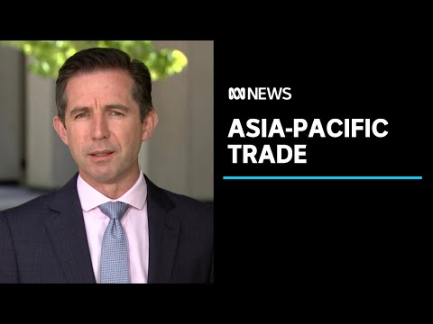 Australia to sign onto a 15 nation Asia-Pacific trade deal | ABC News