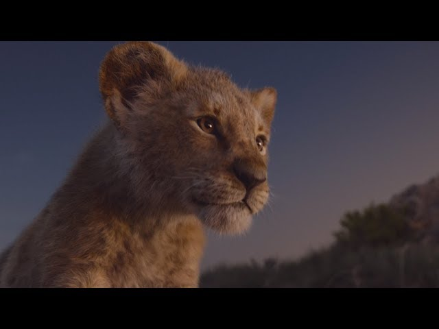The Lion King – Trailer (NL Ondertiteld) - Disney NL