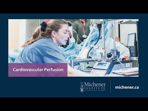 Choose Cardiovascular Perfusion