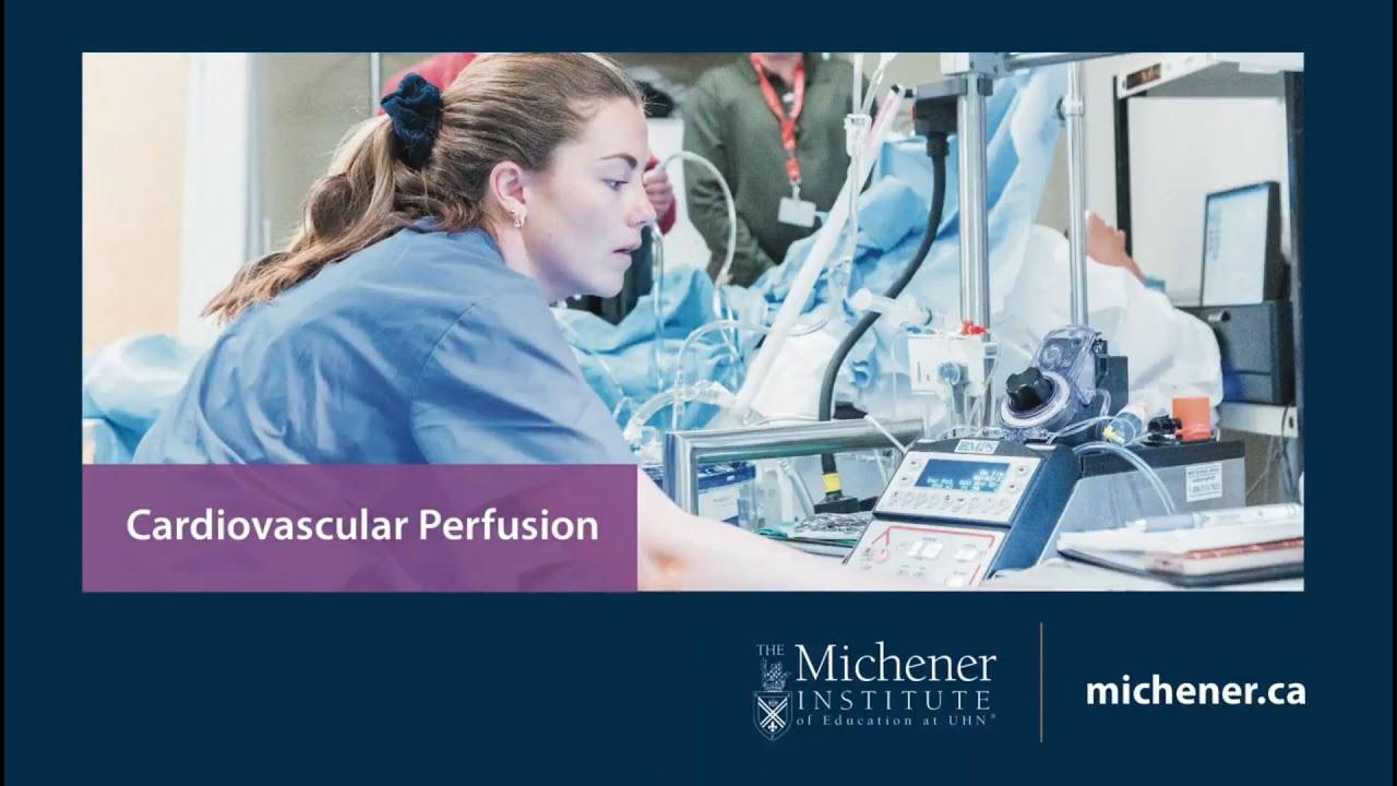 Choose Cardiovascular Perfusion Youtube