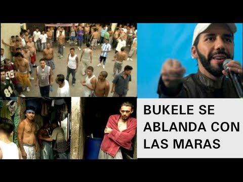 bukele se compadece de las maras y levanta castigo en todas las carceles