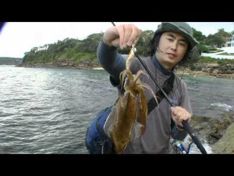 Squid Fishing From Shore And Colours Explained