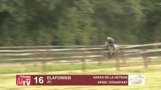 Show Lumet 2016 Lot 16 : Elafonissi