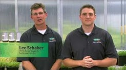 Scotts LawnService Overview
