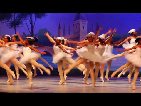 Swan Lake - Ballet for New Audiences