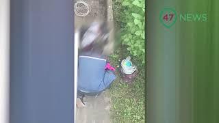 47news: В Выборге ищут того, кто в кустах наряжал мальчика в женские колготки