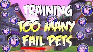 Wizard101: TOO MANY Pets to Mega! ALL FAILS?! (Baby to Mega)