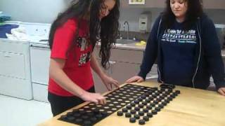 Minnesota Manual Dexterity Test