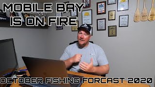 MOBILE BAY is about to be on FIRE