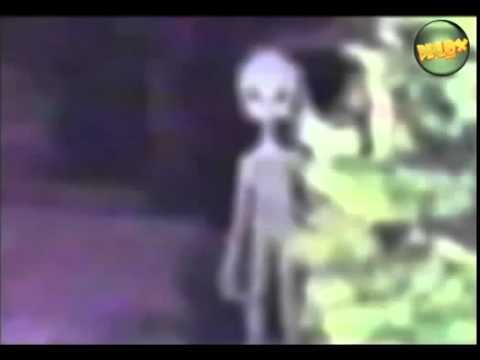 Real Aliens Caught On Camera Leaked ALIEN Footage 2013 ... Real Alien Footage 2013
