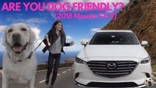**NEW ADVENTURE** 2018 Mazda CX-9 Signature AWD