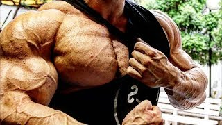 Bodybuilding Motivation - DAY IN and DAY OUT we WORK