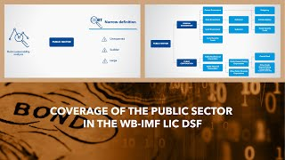 Coverage Of The Public Sector In The WB-IMF LIC DSF