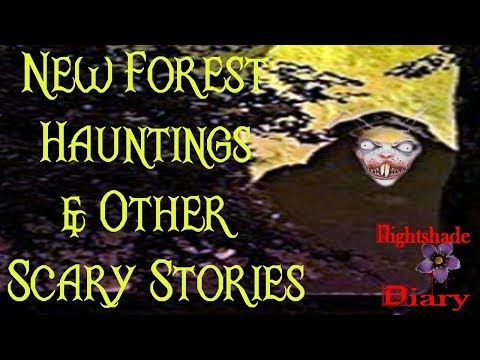 scariest forest stories