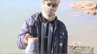Как боевики ИГИЛ снимают «стресс» после жестоких казней и убийств