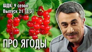 Про ягоды - Доктор Комаровский