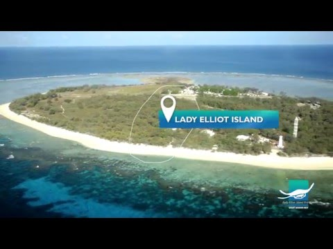 Lady Elliot Island Eco Resort 'Dream Job' Introduction Video