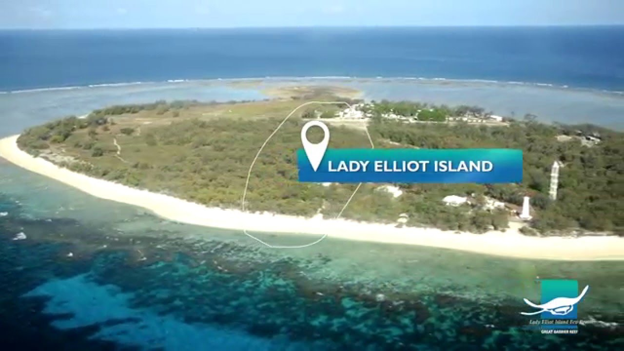 How To Get To Lady Elliot Island
