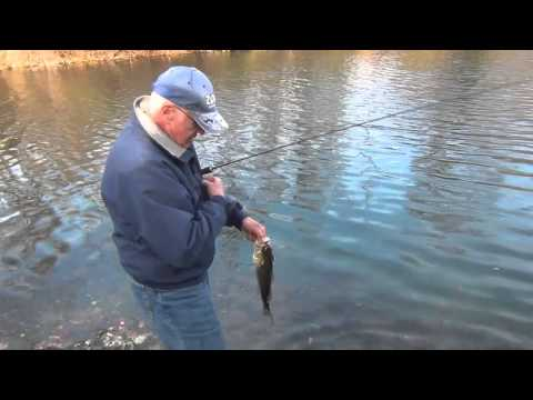 Quarry Monsters - Fishing In Montgomery County, PA