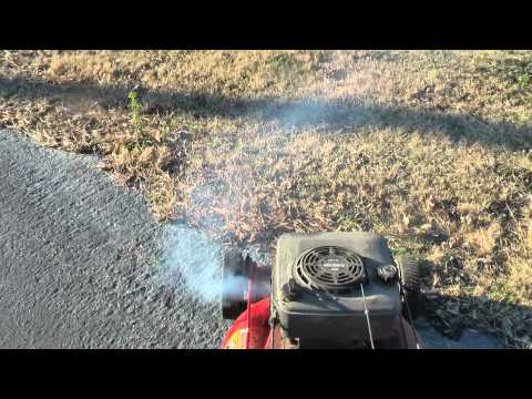 The incredible smoking lawnmower funnycat tv for Killing tree stumps with motor oil
