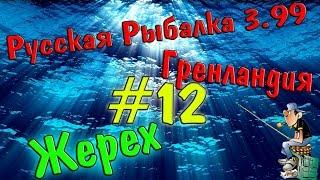 Російська рибалка 3.99 || (#12) || Ловимо жереха.ж