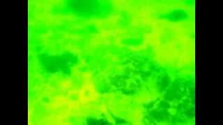 12/9/5浜田江津市黒松海水浴場へ魚突き素潜り水中めがねシュノーケル山...