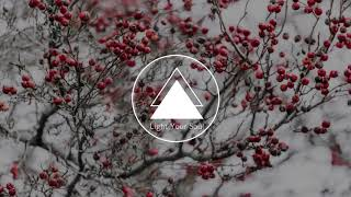 Halsey - Control (Jay Aliyev Remix)