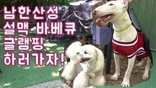 남한산성 설맥바베큐 글램핑 애견동반식당 당일치기 좋은 …
