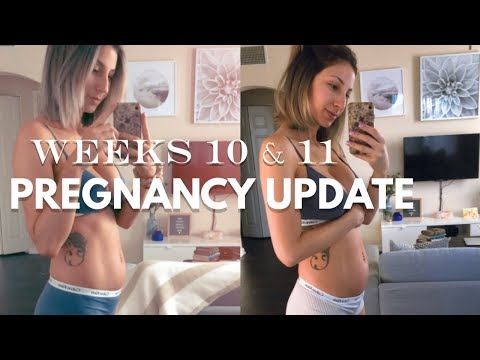 PREGNANCY UPDATE + BELLY SHOT | FIRST PREGNANCY | WEEKS…}