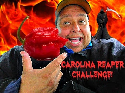 200,000 Subscriber CAROLINA REAPER CHALLENGE! *(Dry Heaving Alert!)*