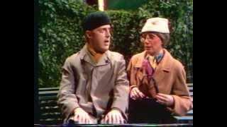 Meneer en mevrouw de bok 1981