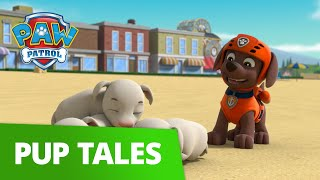 PAW Patrol | Pup Tales #63 | Rescue Episode! | PAW Patrol Official & Friends