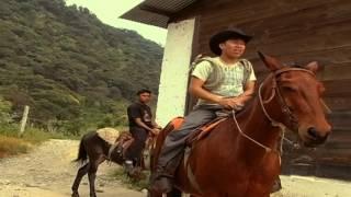 El Agricultor Harold Motta