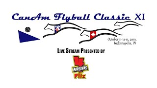 2019 CanAm Flyball Classic: Blue Ring - Saturday