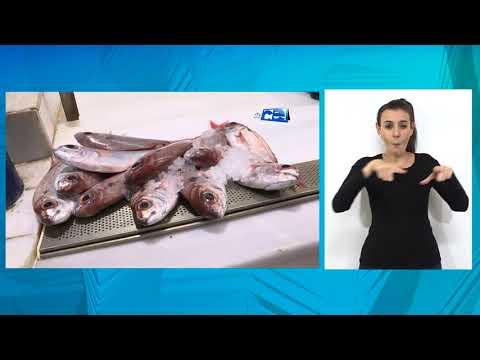 Marruecos mantiene las restricciones en la llegada de pescado a Ceuta